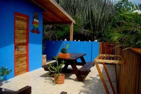 Vakantiehuis Aruba, Centraal Aruba, Santa Cruz studio Hopi Cadushi Studio