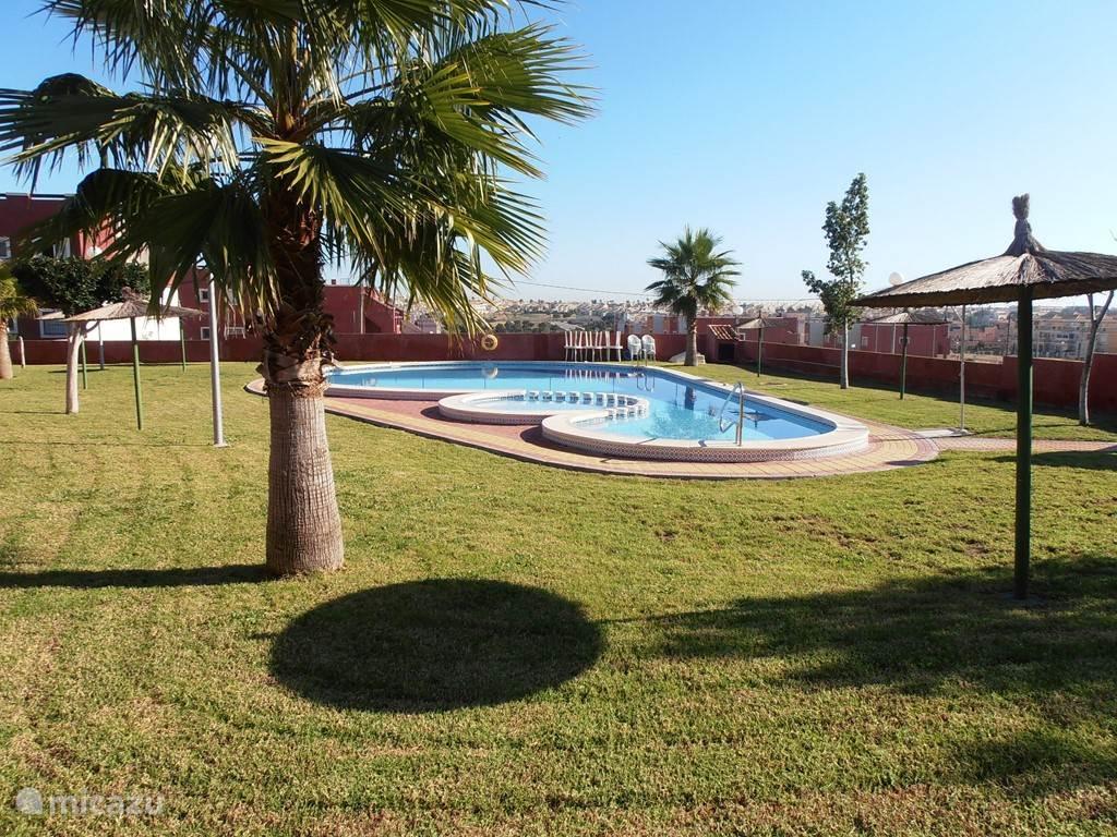 Vakantiehuis Spanje, Costa Blanca, Orihuela Costa Appartement Zuid gericht appartement - 30