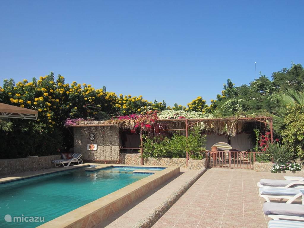 Pool und Garten Pergola mit shisha Ecke