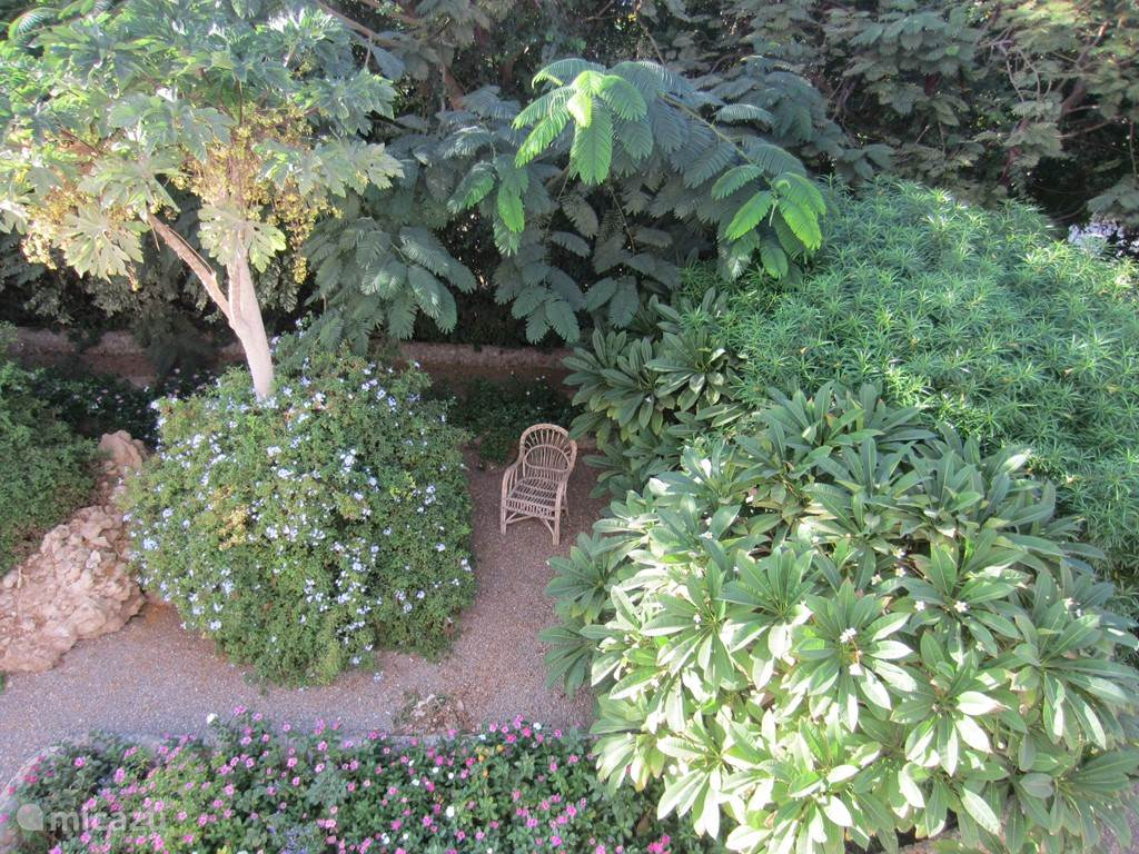 Kleines Stück unserer 1500 m2 Garten
