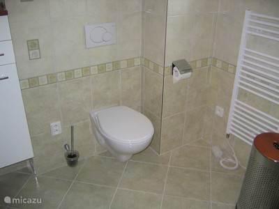 Badkamer boven met inloopdouche