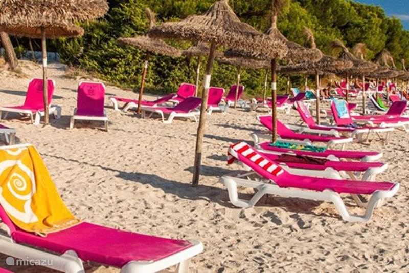 Vakantiehuis Spanje, Mallorca, Alcúdia Villa Villa, zwembad maar 200m van strand