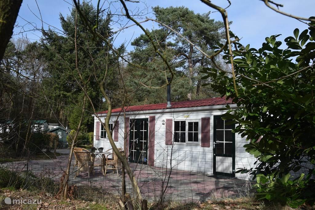 Vakantiehuis Nederland, Drenthe – chalet Mooie vakantiewoning Diever, bosrijk