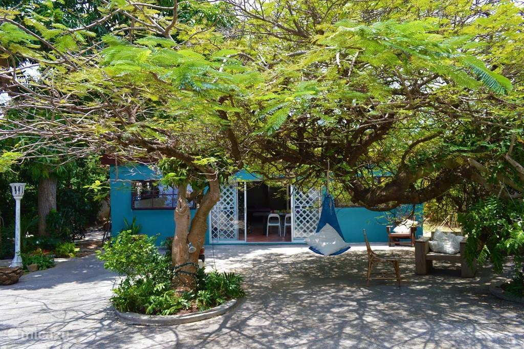 Vakantiehuis Curaçao, Curacao-Midden, Mahaai/damacor - appartement Garden Hideaway