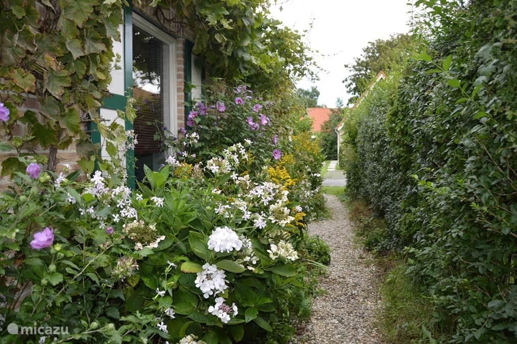 De prachtige weelderige bloemen versieren het huis en brengen een geweldige landelijke sfeer