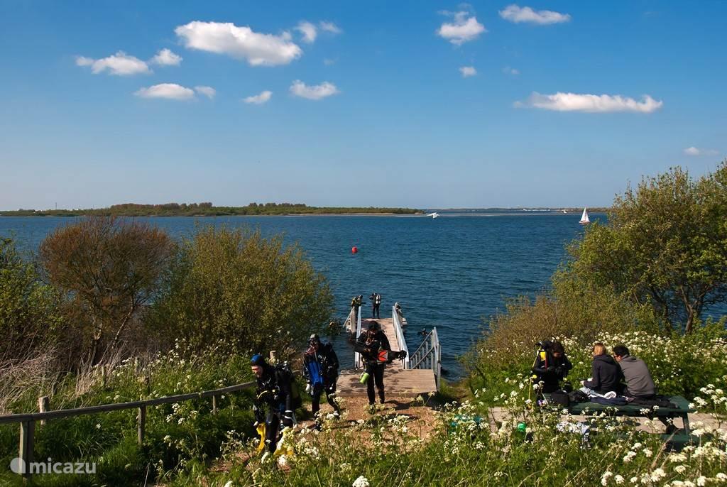 Het eiland Schouwen Duiveland heeft vele mooie duikspots in het Grevelingenmeer en in de Oosterschelde.