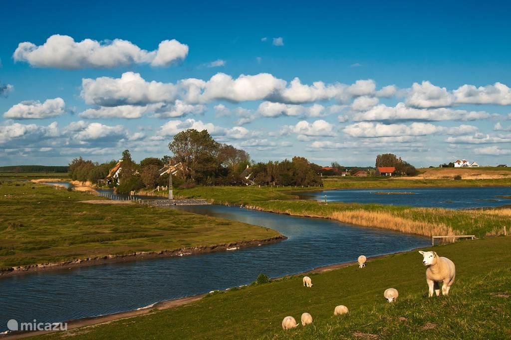 Wandelen en Fietsen door de polders van Schouwen Duiveland via genummerde routes.