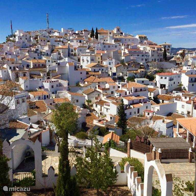 Snuif cultuur in Andalusië!