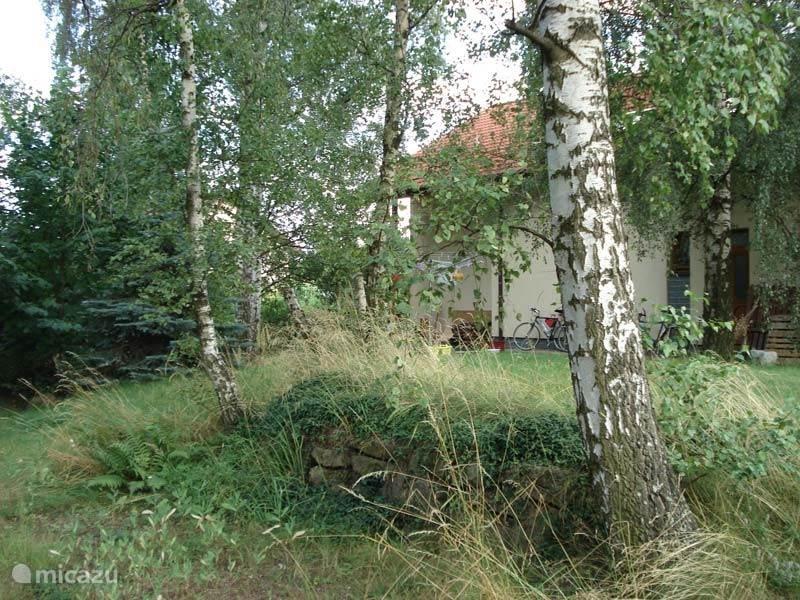 Tuin achter het huis