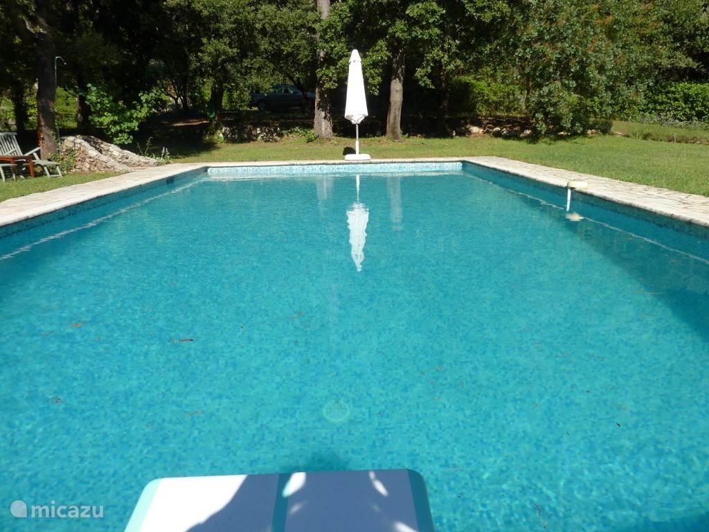 groot zwembad met alarm beveiliging en duikplank