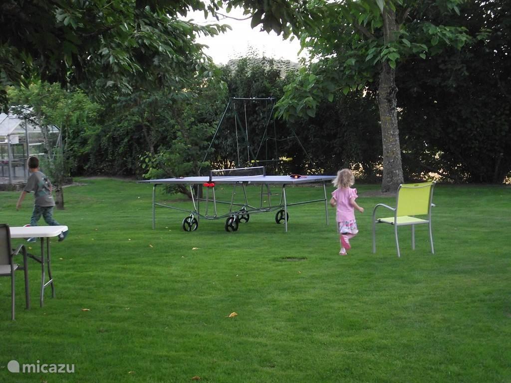 Heerlijk eigen speelveld met schommel en pingpongtafel.