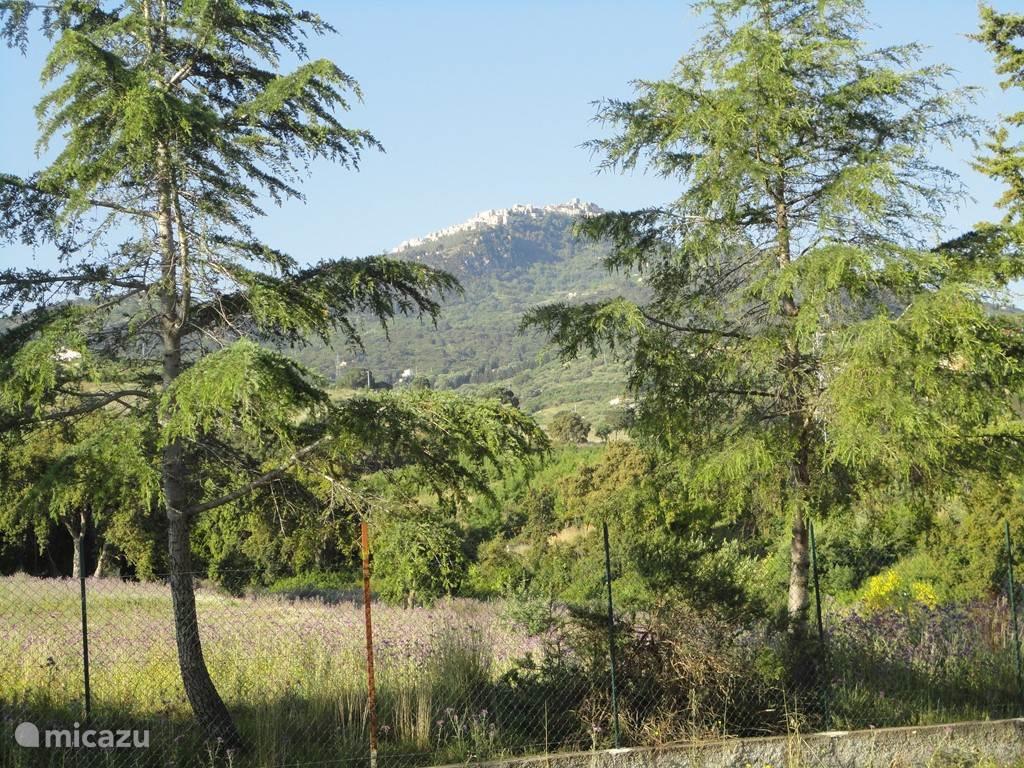 Uitzicht vanuit het terras op Pollina