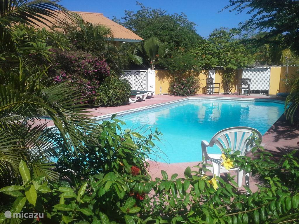 Vacation rental Curaçao, Curacao-Middle, Julianadorp holiday house Spacious house with pool use