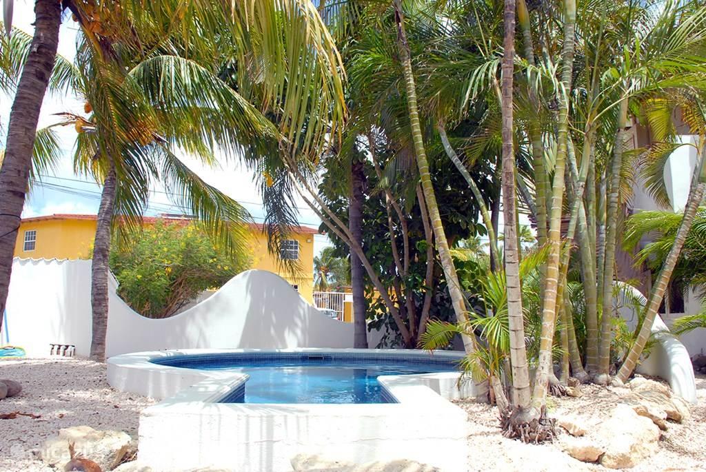 Vacation rental Bonaire, Bonaire, Kralendijk Apartment Spacious apartment on top location