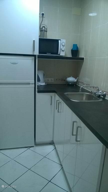 ingerichte keuken met microgolf, inductiekookplaat, oven