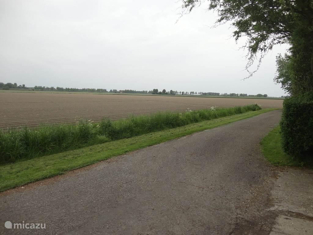 Blik in de polder vanuit de oprit.