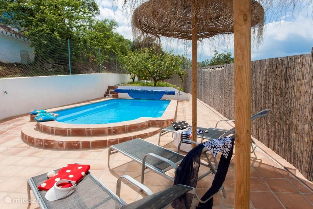 Het terras bij het zwembad met de parasols.