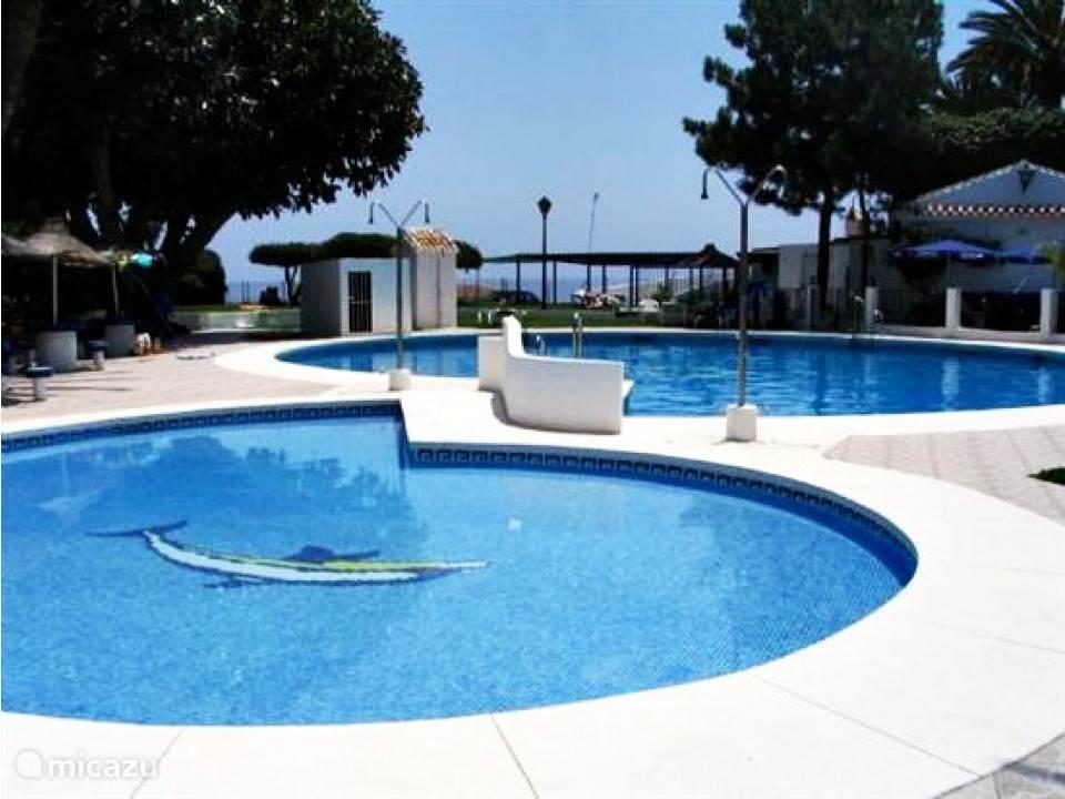 Mooi Gemeenschappelijk zwembad met uitzicht op zee.