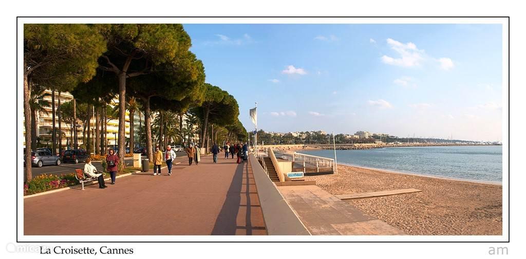 Cannes (alles op voet afstand)