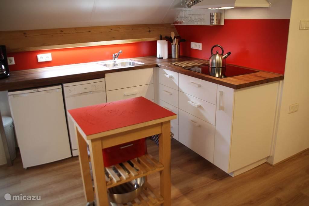 keuken met combi-magnetron, vaatwasser, koel-vries combi, inductie koken en alles wat u nodig heeft