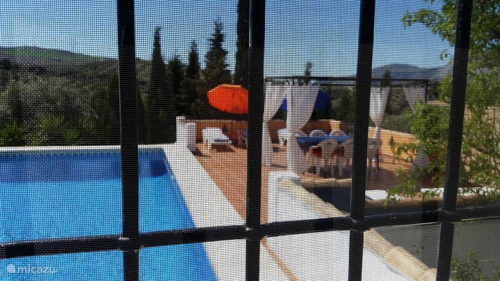 Zicht op zwembad vanuit Blue Poolroom