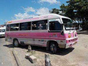 Bussenstandplaats Paramaribo.