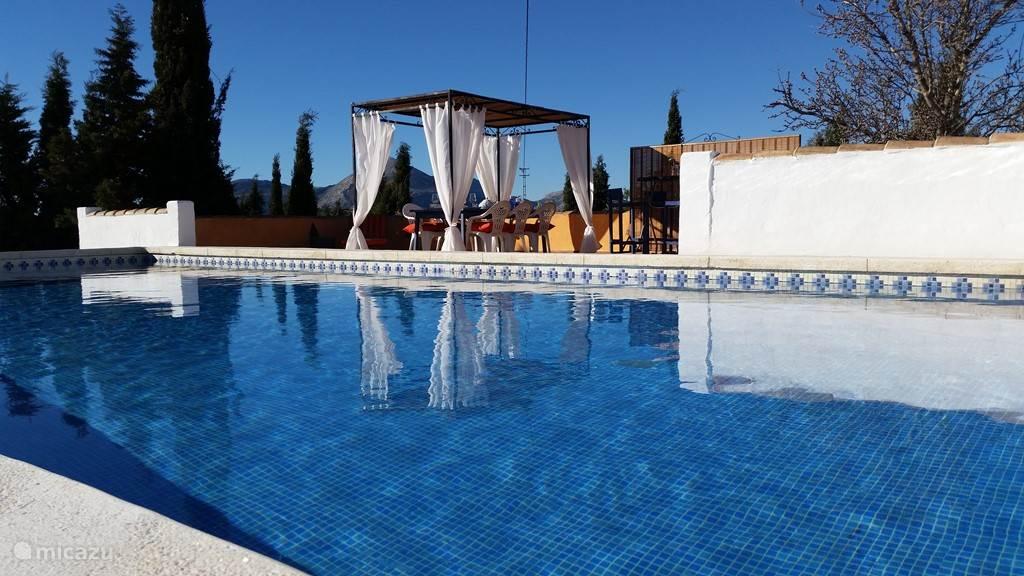 Het zwembad en terras met prieel