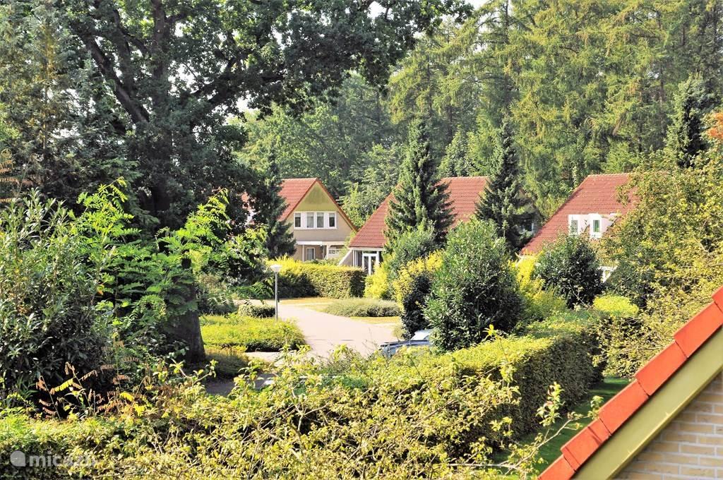 Het vakantiepark, in de groene omgeving van Westerwolde