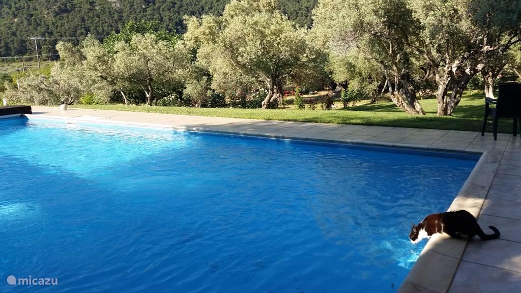 Uitzicht vanaf het zwembad.
