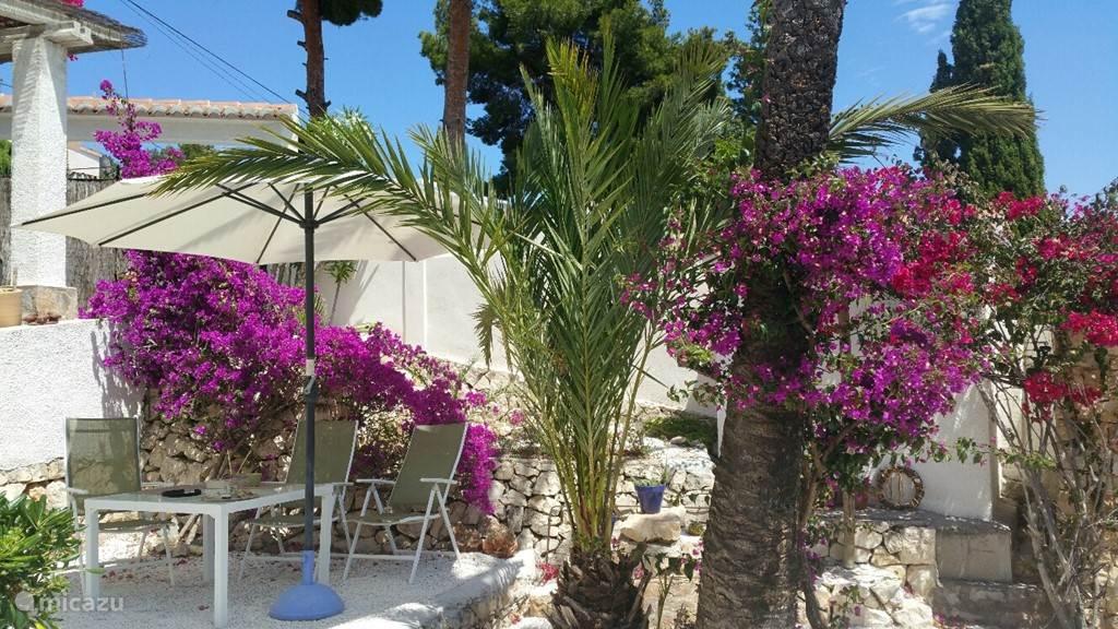 Zijtuin met zitje onder de Palmboom. Relax wegdromen of onder de schaduw van de palmboom een boek lezen. Het zwemplezier van de anderen is op afstand te horen