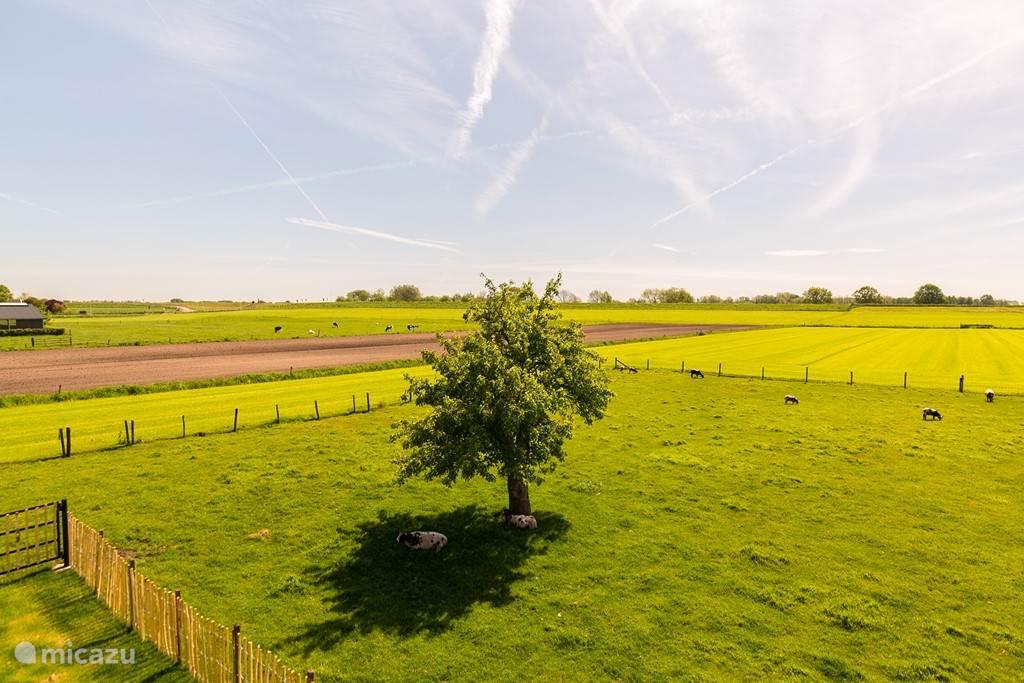 Weidse uitzichten, maar ook bos en boomgaarden in de omgeving!