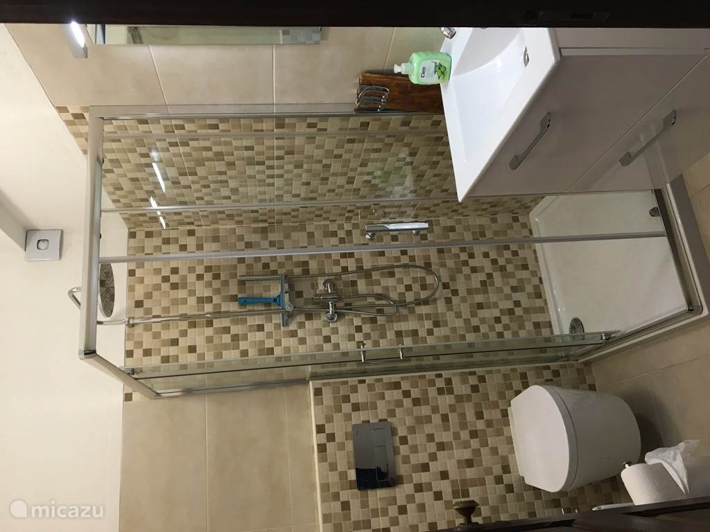 Klein badkamer met duche