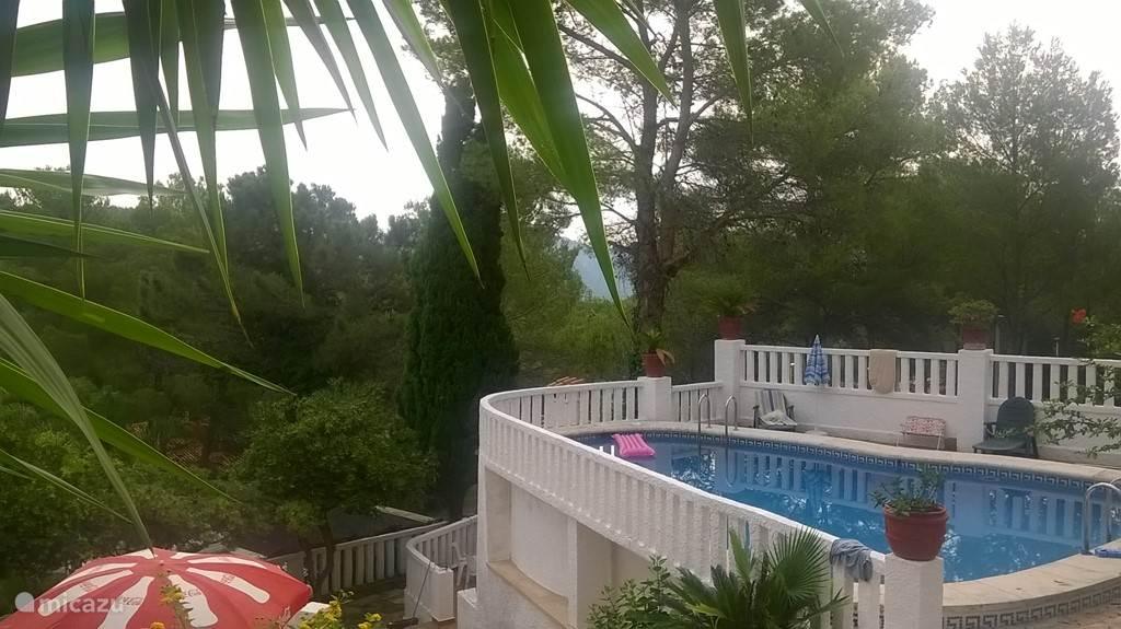 Uitzicht op het zwembad vanaf de oprit