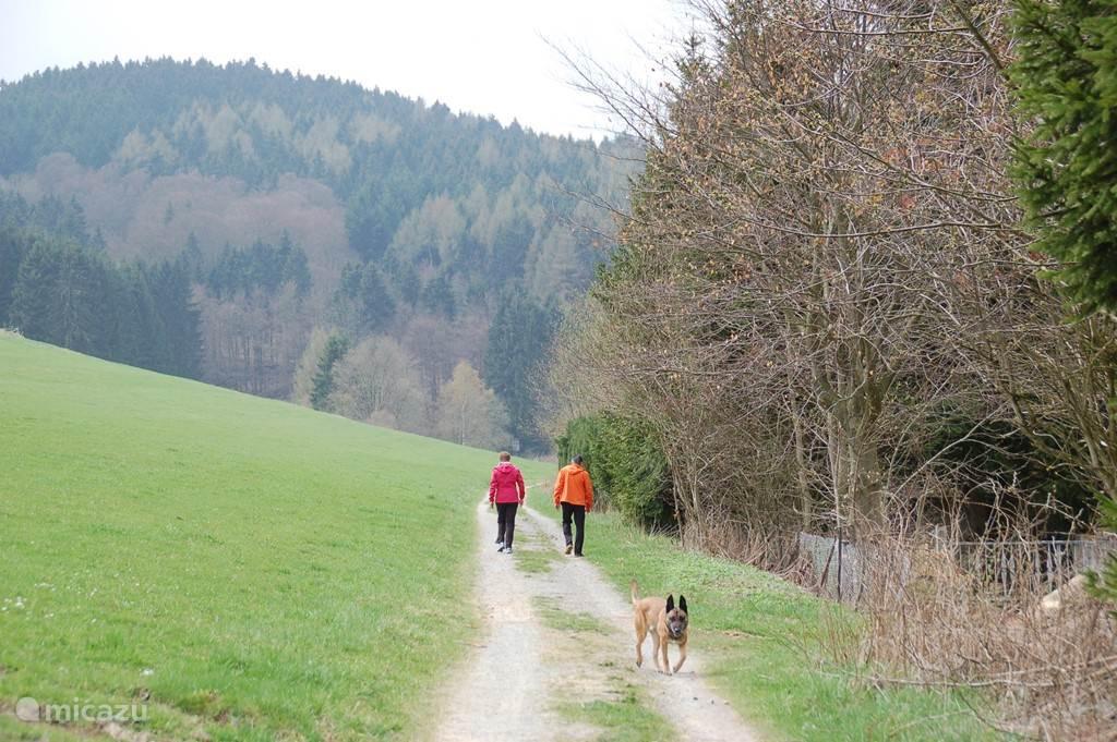 Hiking area