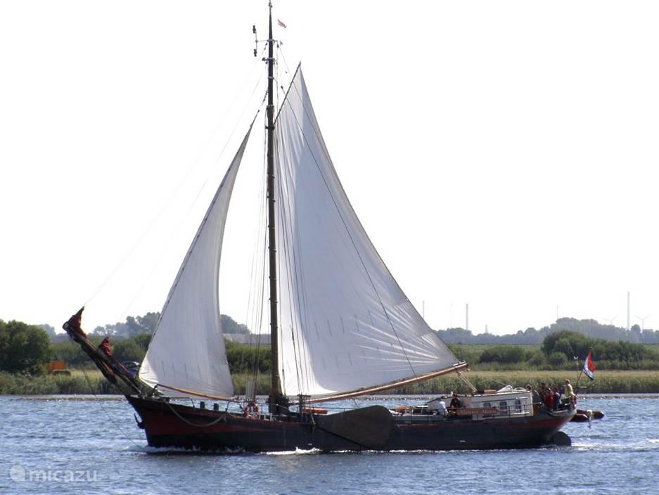 Vakantiehuis Nederland, Noord-Holland, Enkhuizen camper / jacht / woonboot Gependam