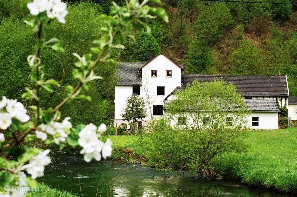 Haus im Westerwalduis in Westerwald met op de voorgrond de Wied