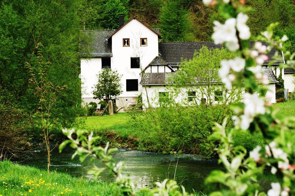 Huis in Westerwald, slechts 3 uur van Utrecht, is voor u beschikbaar van 18 juni tot 13 juli. Wilt in in deze periode van het buitenleven genieten?