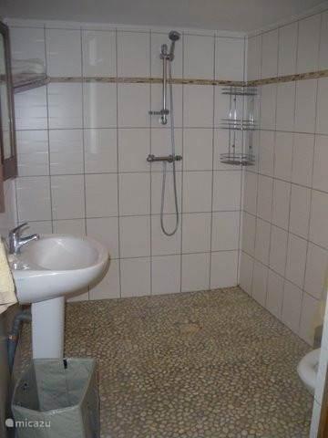 Badkamer met wc
