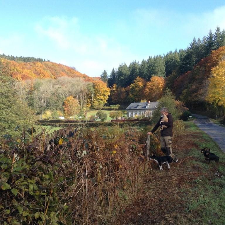 Heerlijk nazomeren in natuurpark de Morvan, Bourgondie. Prachtige herfstkleuren, rust en een prachtig uitzicht. In de maand oktober €50 korting p.week