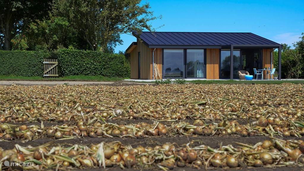 Vakantiehuis Nederland, Zeeland, Zonnemaire - vakantiehuis Villa Landelijk rolstoeltoegankelijk