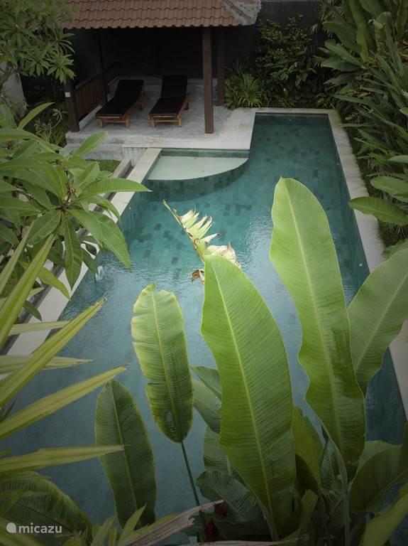 Ferienwohnung Indonesien, Bali – villa Dugul Ubud - Villa mit privatem Pool