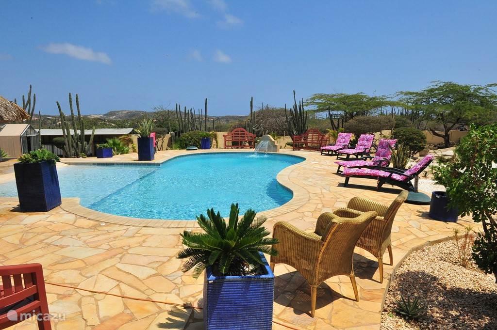 zwembad met relax ligbedden