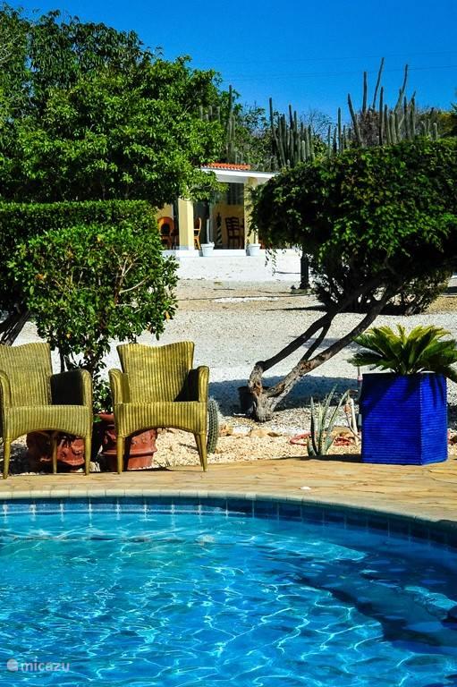 Uitzicht vanaf het zwembad naar de villa