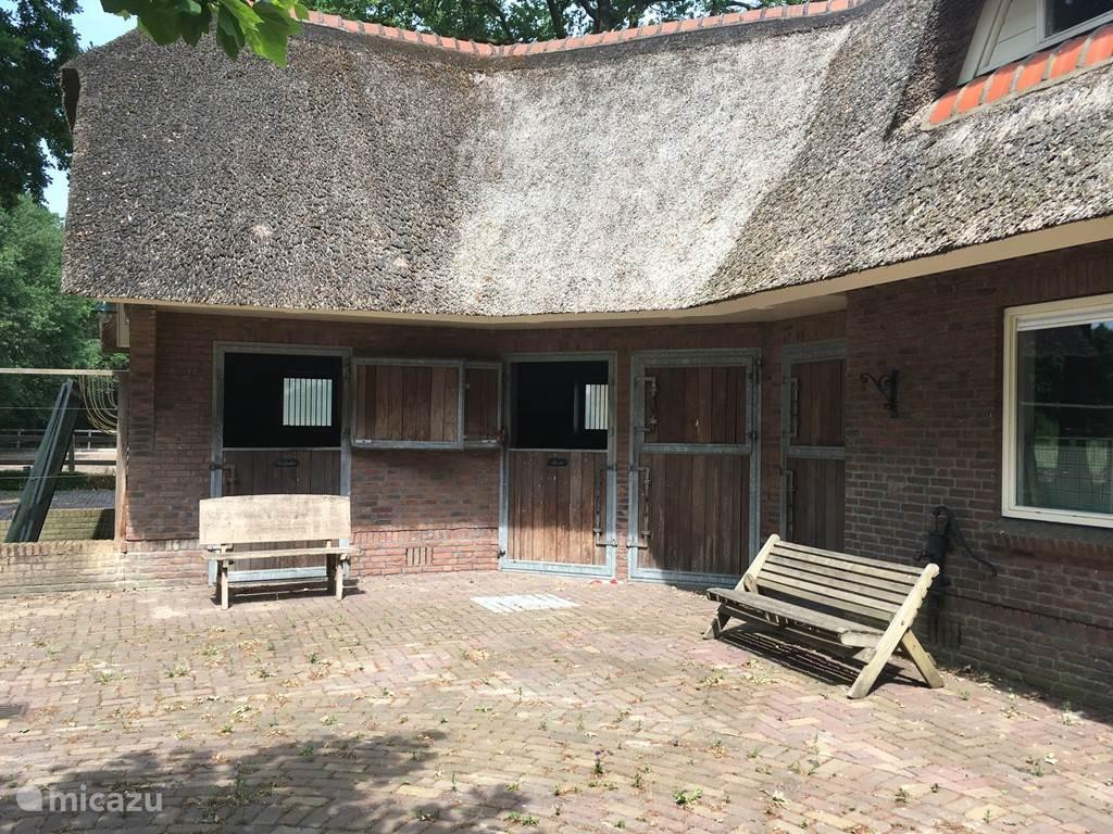 Vakantiehuis Nederland, Utrecht, Veenendaal Villa De Zwaluw  (met stallen)
