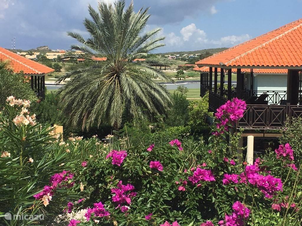Vacation rental Curaçao, Curacao-Middle, Blue Bay villa Villa Bougainville - Standvilla