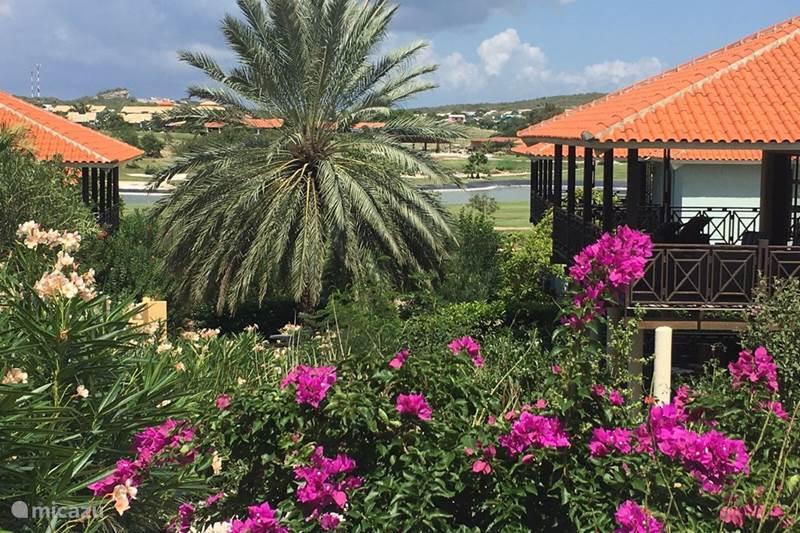 Vacation rental Curaçao, Curacao-Middle, Blue Bay Villa Villa Bougainville - Beach Villa