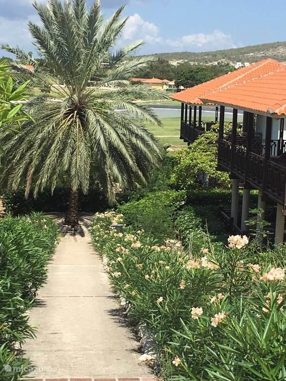 Ferienwohnung Curaçao, Curacao-Mitte, Blue Bay Villa Villa Bougainville - Strandvilla
