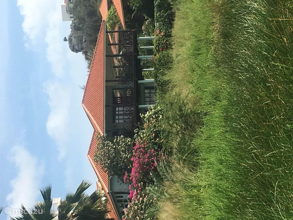 De villa ligt verscholen tussen de bougainville