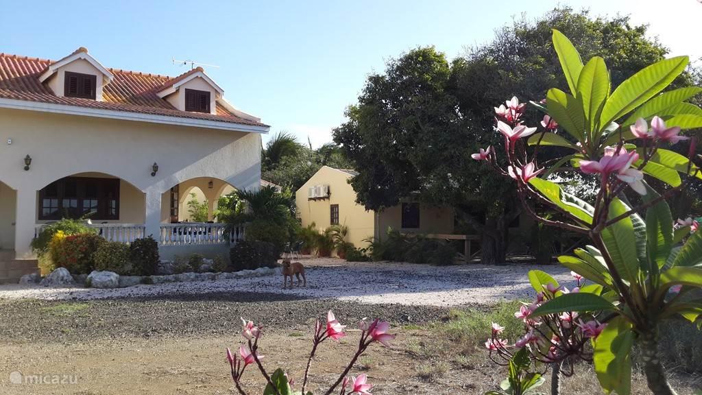 Voorzijde woning met naastgelegen Cura Vida Center en beheerderswoning