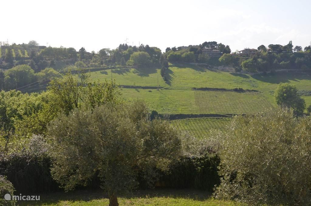 Het uitzicht recht naar voren op de heuvels